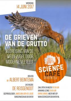 De Grieven Van De Grutto: Bedreiging van de weidevogel door moderne veeteelt
