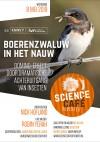 Boerenzwaluw in het nauw: Domino-effect door dramatische achteruitgang van insecten
