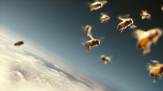 plaatje filmhuisdocumentaire bijen